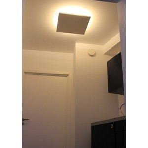 Plafondlamp 325 PLAT